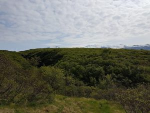 Wald NP 2